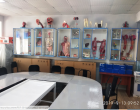 """""""ANATOMICUM"""", September, 2019: auditoriums equipped with the latest interactive displays"""
